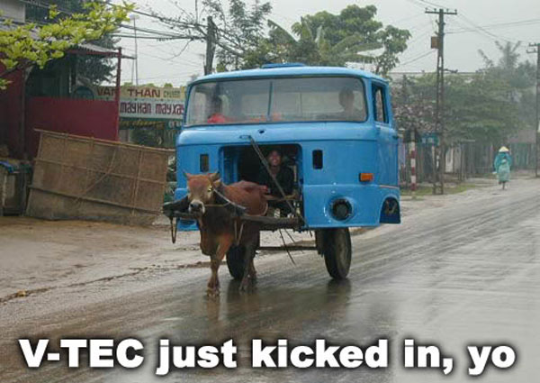 vtec-just-kicked-in-yo-cow-pulling-truck-cart