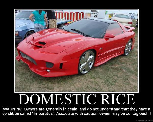 Domestic Rice